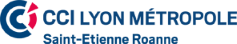 CCI-Lyon-Metropole-Saint-Etienne-Roanne